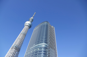 そびえ立つ東京スカイツリーの写真素材 [FYI02021464]