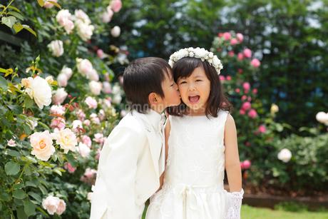 小さな恋人のガーデンウェディングの写真素材 [FYI02022438]