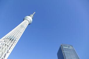 東京スカイツリーの写真素材 [FYI02022927]