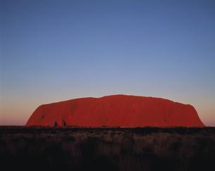 エアーズロックの夕景 オーストラリアの写真素材 [FYI02023273]