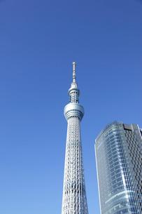 東京スカイツリーの写真素材 [FYI02024267]