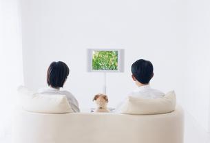 リビングでテレビを見て寛ぐカップルと犬の写真素材 [FYI02024698]
