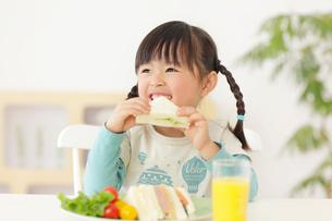 笑顔でサンドイッチを食べる女の子の写真素材 [FYI02024986]