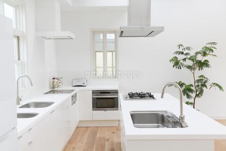 明るくて広いダイニングキッチンの写真素材 [FYI02025137]