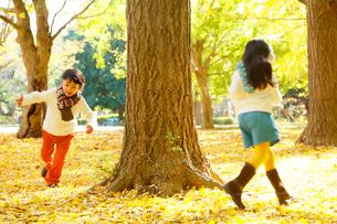 紅葉のきれいな秋の公園で遊ぶ子供達の写真素材 [FYI02025225]