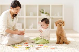 リビングで木のおもちゃで遊ぶ赤ちゃんとお母さんの写真素材 [FYI02025259]