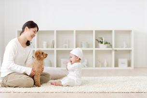 リビングでくつろぐ赤ちゃんとお母さんと犬の写真素材 [FYI02025853]