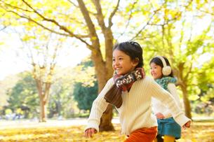 紅葉のきれいな秋の公園で遊ぶ子供達の写真素材 [FYI02025887]