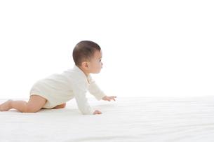 ベッドでハイハイする赤ちゃんの写真素材 [FYI02025958]