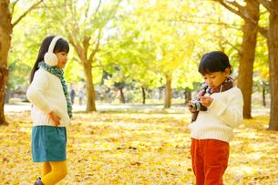 紅葉のきれいな秋の公園で写真を撮る子供達の写真素材 [FYI02025970]