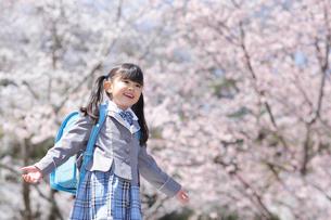 桜の木の下に立つ新入学生の写真素材 [FYI02026816]