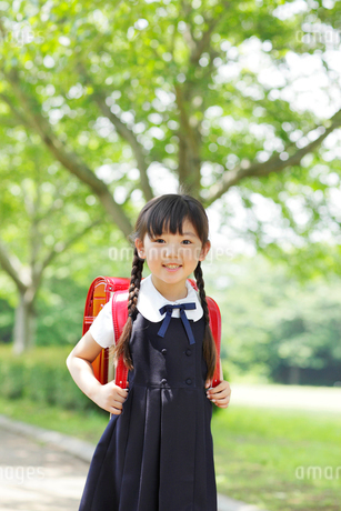 新緑の道をランドセルを背負い歩く女の子の写真素材 [FYI02026861]