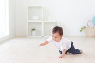 フローリングの床でハイハイをする赤ちゃんの写真素材 [FYI02027043]