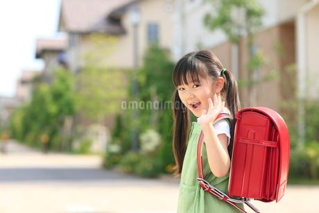 ランドセルを背負い住宅街を歩く女の子の写真素材 [FYI02027056]