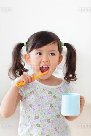 歯磨きをする女の子の写真素材 [FYI02027058]