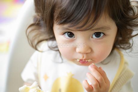 クリームパンを食べる小さな女の子の写真素材 [FYI02027125]