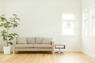 ソファーのあるシンプルモダンなリビングルームの写真素材 [FYI02027287]