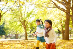 紅葉のきれいな秋の公園で遊ぶ子供達の写真素材 [FYI02027296]