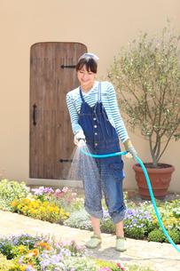 庭の花に水やりをする女性の写真素材 [FYI02027433]