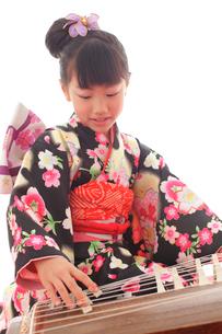 振り袖を着てお琴を弾く女の子の写真素材 [FYI02027443]