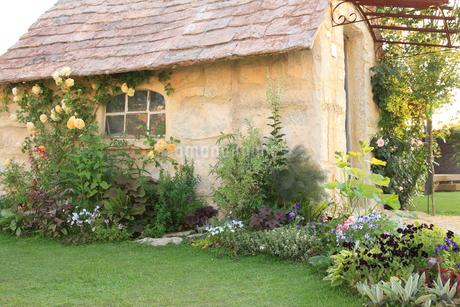 バラの咲く可愛い小屋の写真素材 [FYI02027977]