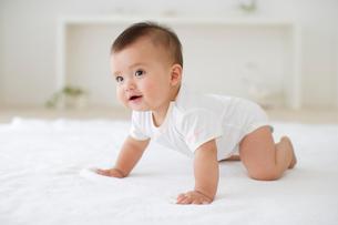 リビングでハイハイする赤ちゃんの写真素材 [FYI02028091]