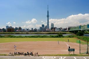 荒川土手から見た東京スカイツリーの写真素材 [FYI02028373]