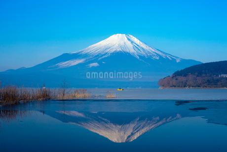 山中湖から望む逆さ富士山の写真素材 [FYI02028386]