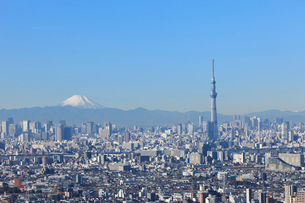 東京スカイツリーと富士山の写真素材 [FYI02028450]