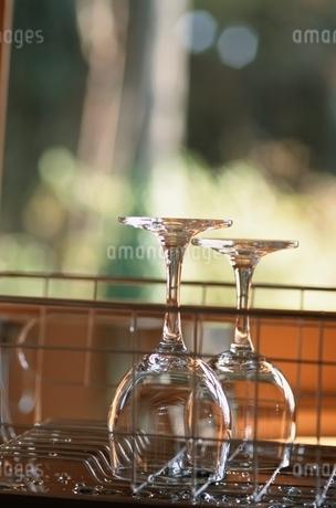 グラスの写真素材 [FYI02028485]