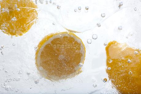 氷とレモンの写真素材 [FYI02028664]