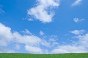 新緑の草原と青空の写真素材 [FYI02028739]