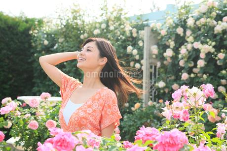 満開のローズガーデンで休日を楽しむ女性の写真素材 [FYI02028906]