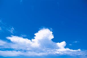 青空と入道雲の写真素材 [FYI02029003]