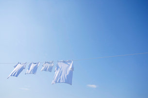 青空とまっ白な洗濯物の写真素材 [FYI02029101]