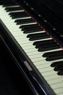 ピアノの鍵盤の写真素材 [FYI02029218]