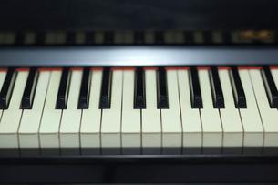 ピアノの鍵盤の写真素材 [FYI02029832]