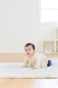 リビングでハイハイする赤ちゃんの合成向け人物素材の写真素材 [FYI02029932]