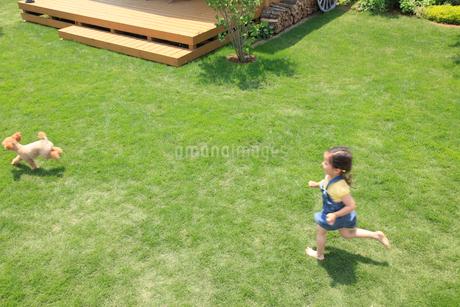 芝生の庭を走る女の子と犬の写真素材 [FYI02030097]