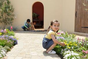 フラワーガーデンで遊ぶ男の子と女の子と犬の写真素材 [FYI02030193]