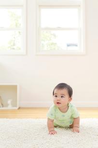 リビングでハイハイする赤ちゃんの写真素材 [FYI02030327]