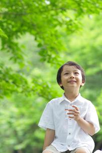 新緑の中で水を飲む男の子の写真素材 [FYI02030488]