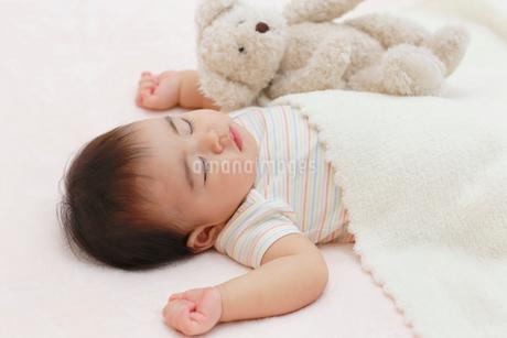 昼寝をする赤ちゃんの写真素材 [FYI02030549]