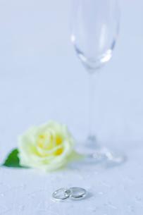 結婚指輪の写真素材 [FYI02030695]