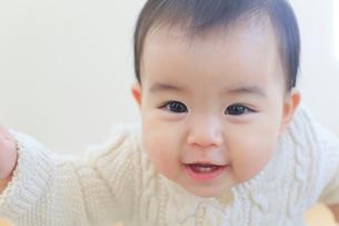 赤ちゃんのポートレートの写真素材 [FYI02030791]