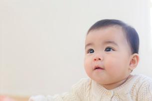 赤ちゃんのポートレートの写真素材 [FYI02030809]
