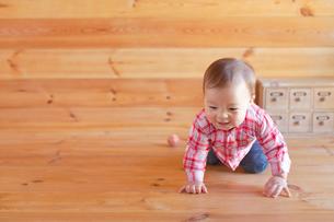 木の床をハイハイする赤ちゃんの合成向け人物素材の写真素材 [FYI02030811]