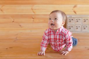 木の床でハイハイする赤ちゃんの写真素材 [FYI02030830]