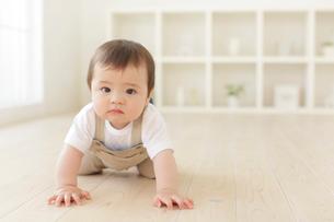 リビングでハイハイするハーフの赤ちゃんの写真素材 [FYI02030961]