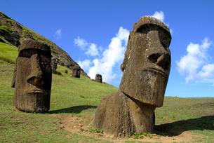イースター島 モアイ像の写真素材 [FYI02031021]